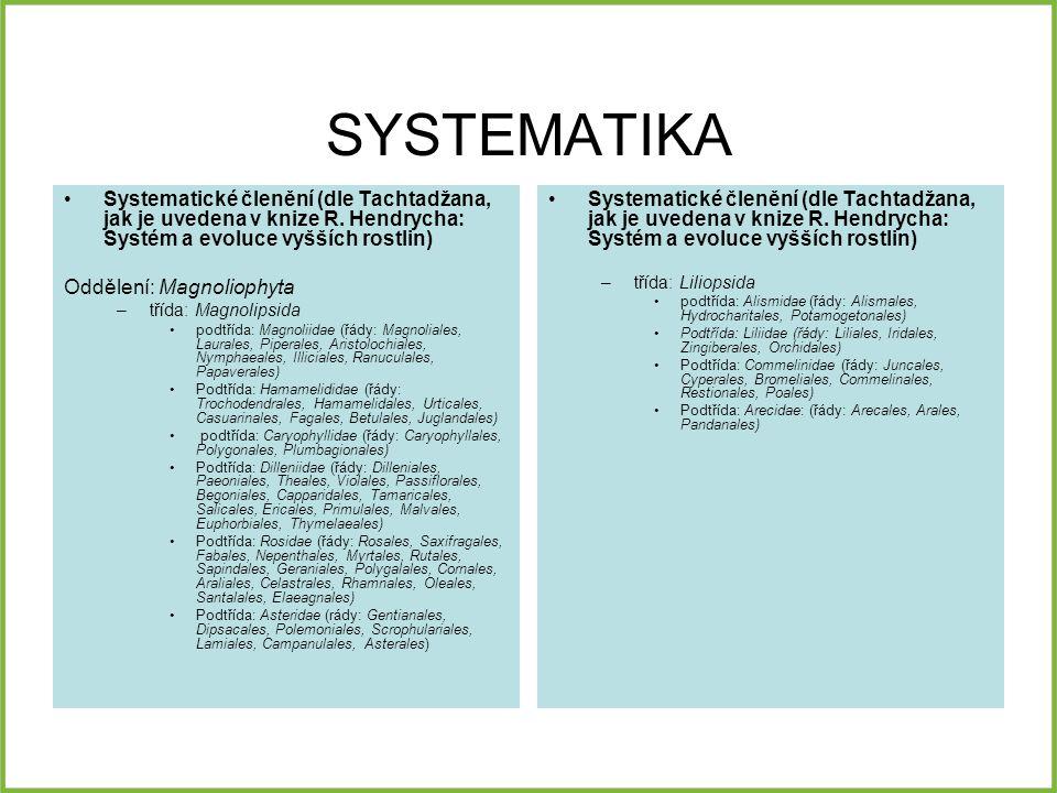 SYSTEMATIKA Systematické členění (dle Tachtadžana, jak je uvedena v knize R.