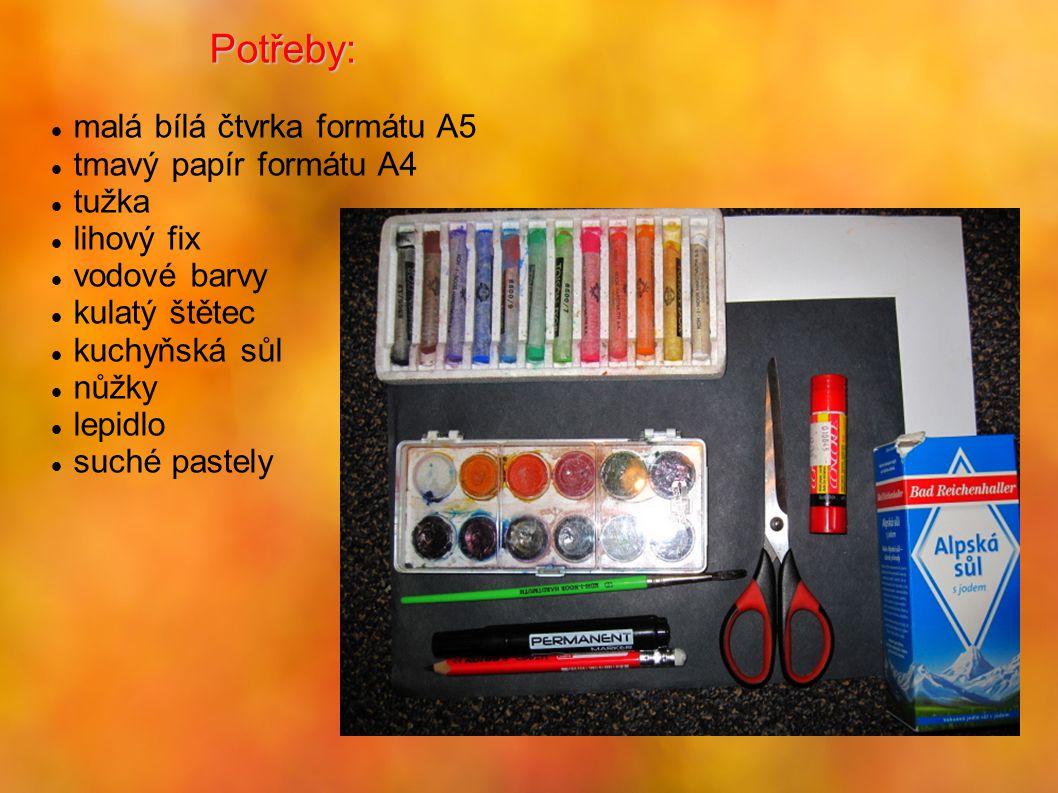 Potřeby: malá bílá čtvrka formátu A5 tmavý papír formátu A4 tužka lihový fix vodové barvy kulatý štětec kuchyňská sůl nůžky lepidlo suché pastely