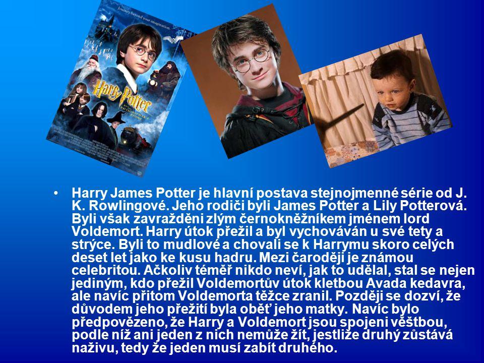 Harry James Potter je hlavní postava stejnojmenné série od J. K. Rowlingové. Jeho rodiči byli James Potter a Lily Potterová. Byli však zavražděni zlým