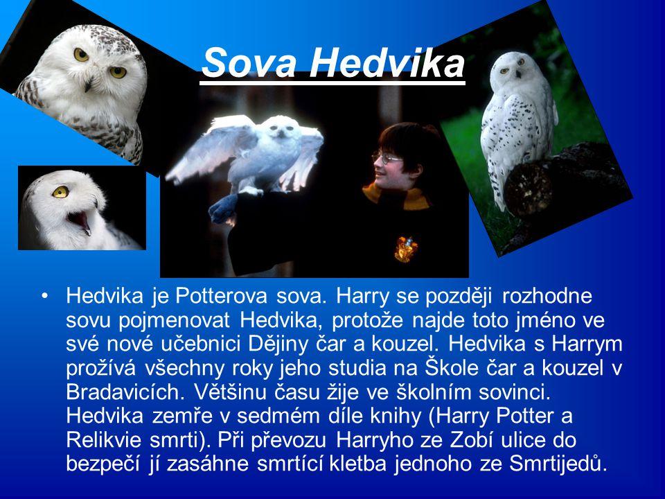 Sova Hedvika Hedvika je Potterova sova. Harry se později rozhodne sovu pojmenovat Hedvika, protože najde toto jméno ve své nové učebnici Dějiny čar a