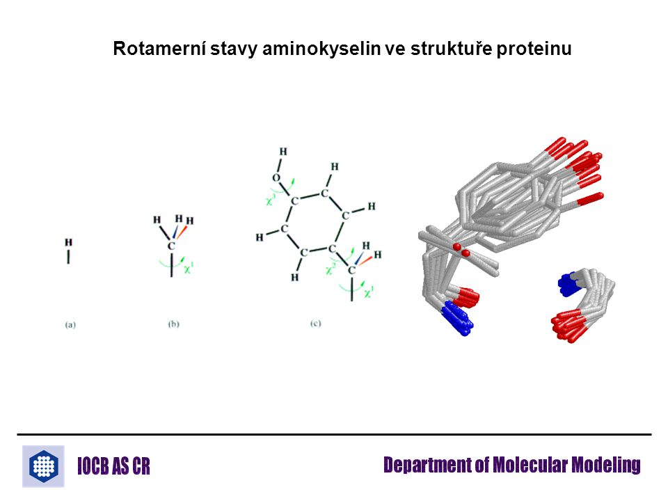 Rotamerní stavy aminokyselin ve struktuře proteinu