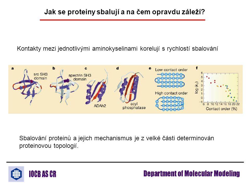 Jak se proteiny sbalují a na čem opravdu záleží? Kontakty mezi jednotlivými aminokyselinami korelují s rychlostí sbalování Sbalování proteinů a jejich