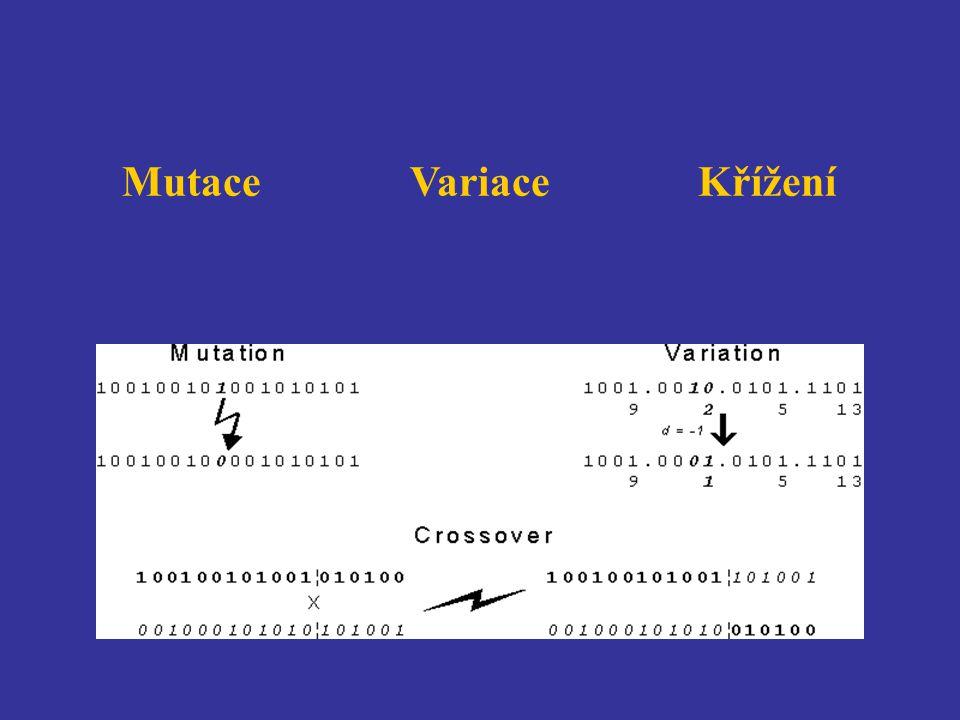 MutaceVariaceKřížení