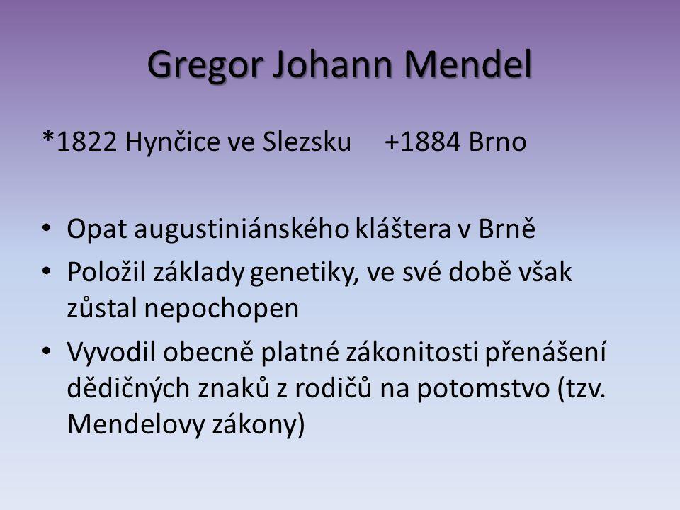 Gregor Johann Mendel *1822 Hynčice ve Slezsku +1884 Brno Opat augustiniánského kláštera v Brně Položil základy genetiky, ve své době však zůstal nepoc