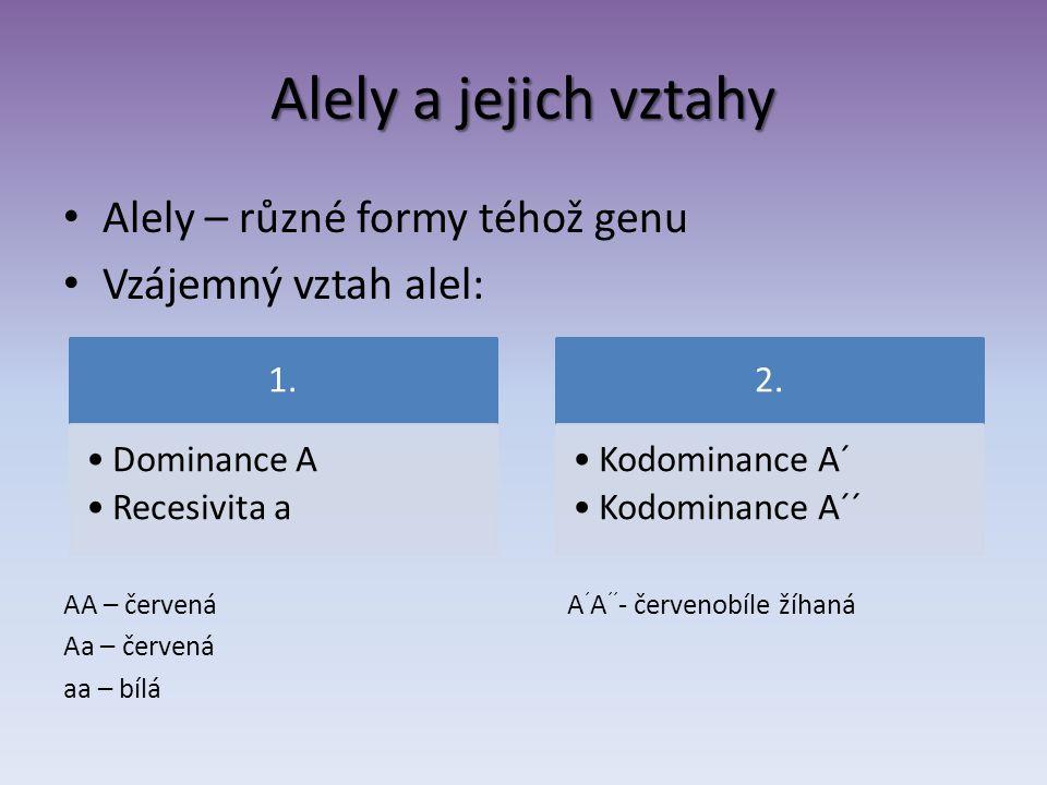 Alely a jejich vztahy Alely – různé formy téhož genu Vzájemný vztah alel: AA – červená A ´ A ´´ - červenobíle žíhaná Aa – červená aa – bílá 1. Dominan