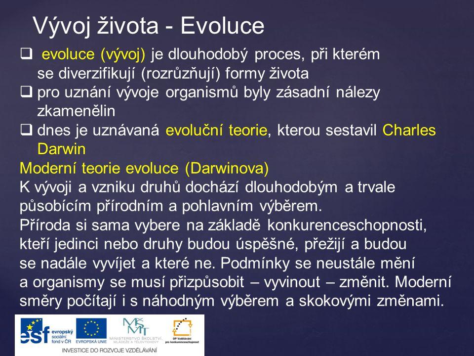 Vývoj života - Evoluce  evoluce (vývoj) je dlouhodobý proces, při kterém se diverzifikují (rozrůzňují) formy života  pro uznání vývoje organismů byl