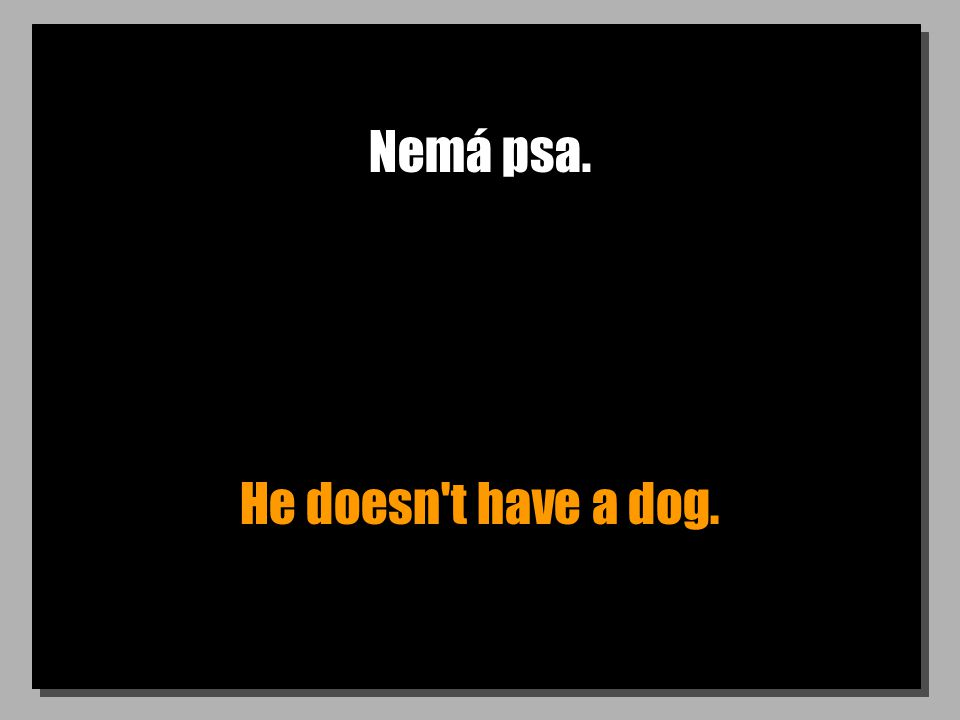 Nemá psa. He doesn t have a dog.
