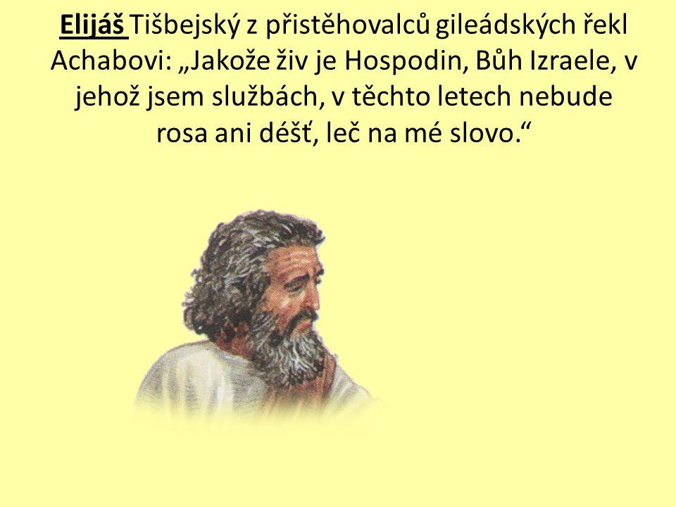 Ten Eliáš se mi nelíbí, musím něco podniknout, jinak ztratím moc.