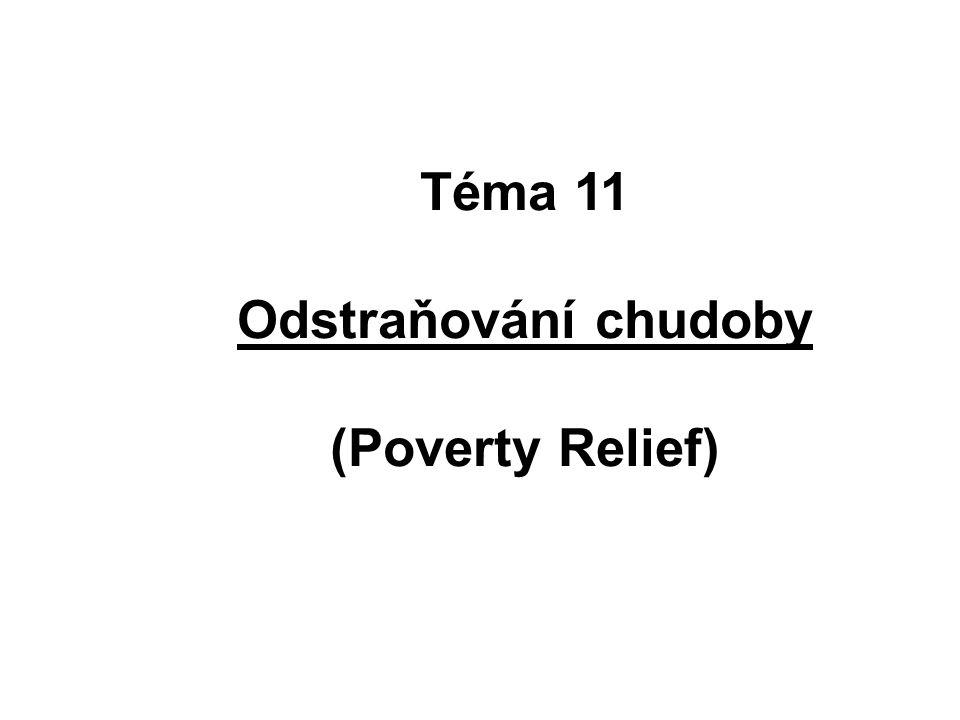 Hlavní problémy odstraňování chudoby: chudoba je mnohorozměrná (má různé projevy – vzdělání, bydlení, majetek...) chudoba je dynamická, mění se v různých fázích života chudoba je relativní (srovnání s jinými => nerovnost) hlavním zájmem sociální ochrany je chudoba vztažená na nízký příjem
