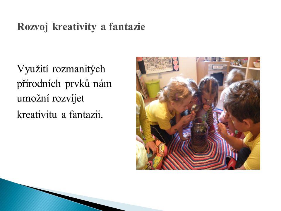 Rozvoj kreativity a fantazie Využití rozmanitých přírodních prvků nám umožní rozvíjet kreativitu a fantazii.