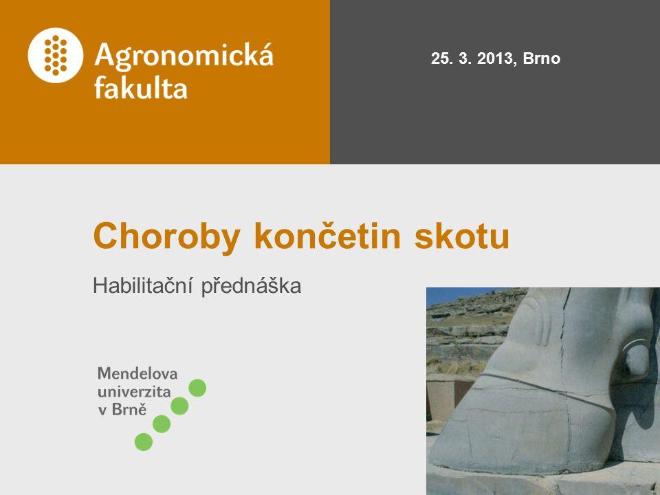 Choroby končetin skotu Habilitační přednáška 25. 3. 2013, Brno