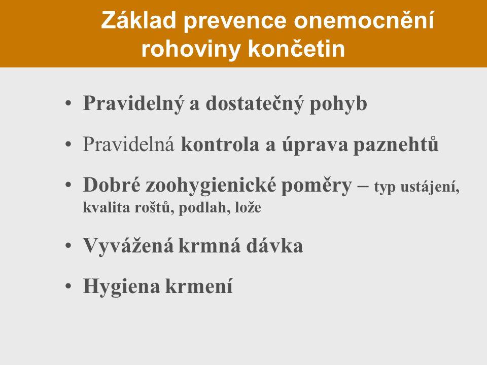 Základ prevence onemocnění rohoviny končetin Pravidelný a dostatečný pohyb Pravidelná kontrola a úprava paznehtů Dobré zoohygienické poměry – typ ustá