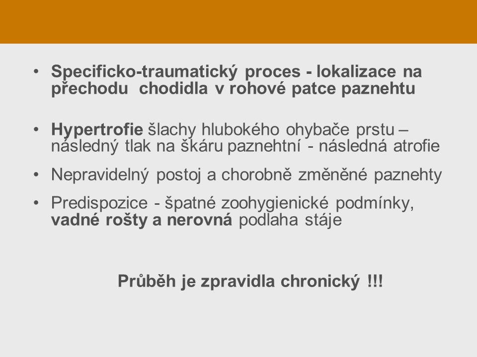 Specificko-traumatický proces - lokalizace na přechodu chodidla v rohové patce paznehtu Hypertrofie šlachy hlubokého ohybače prstu – následný tlak na