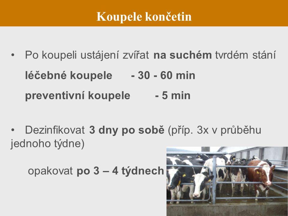 Po koupeli ustájení zvířat na suchém tvrdém stání léčebné koupele - 30 - 60 min preventivní koupele - 5 min Dezinfikovat 3 dny po sobě (příp. 3x v prů