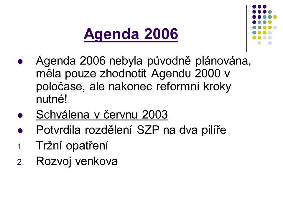 Agenda 2006 Agenda 2006 nebyla původně plánována, měla pouze zhodnotit Agendu 2000 v poločase, ale nakonec reformní kroky nutné! Schválena v červnu 20