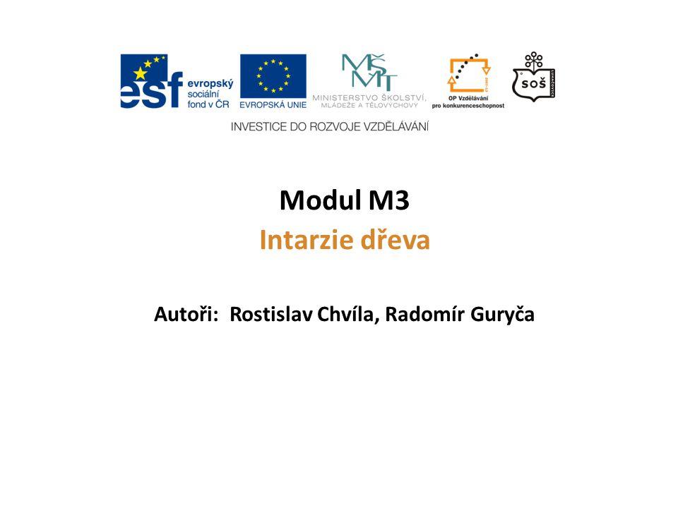 Modul M3 Intarzie dřeva Autoři: Rostislav Chvíla, Radomír Guryča