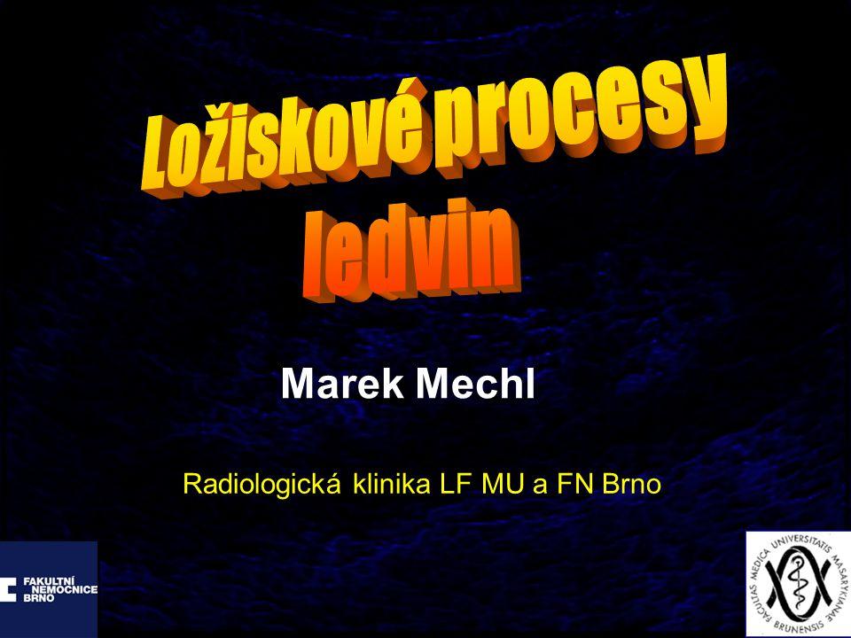 Marek Mechl Radiologická klinika LF MU a FN Brno