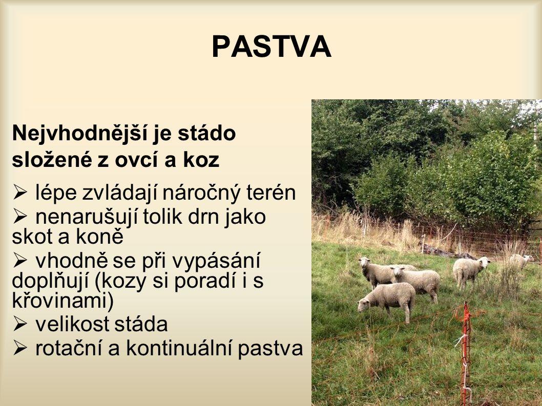 PASTVA Nejvhodnější je stádo složené z ovcí a koz  lépe zvládají náročný terén  nenarušují tolik drn jako skot a koně  vhodně se při vypásání doplň