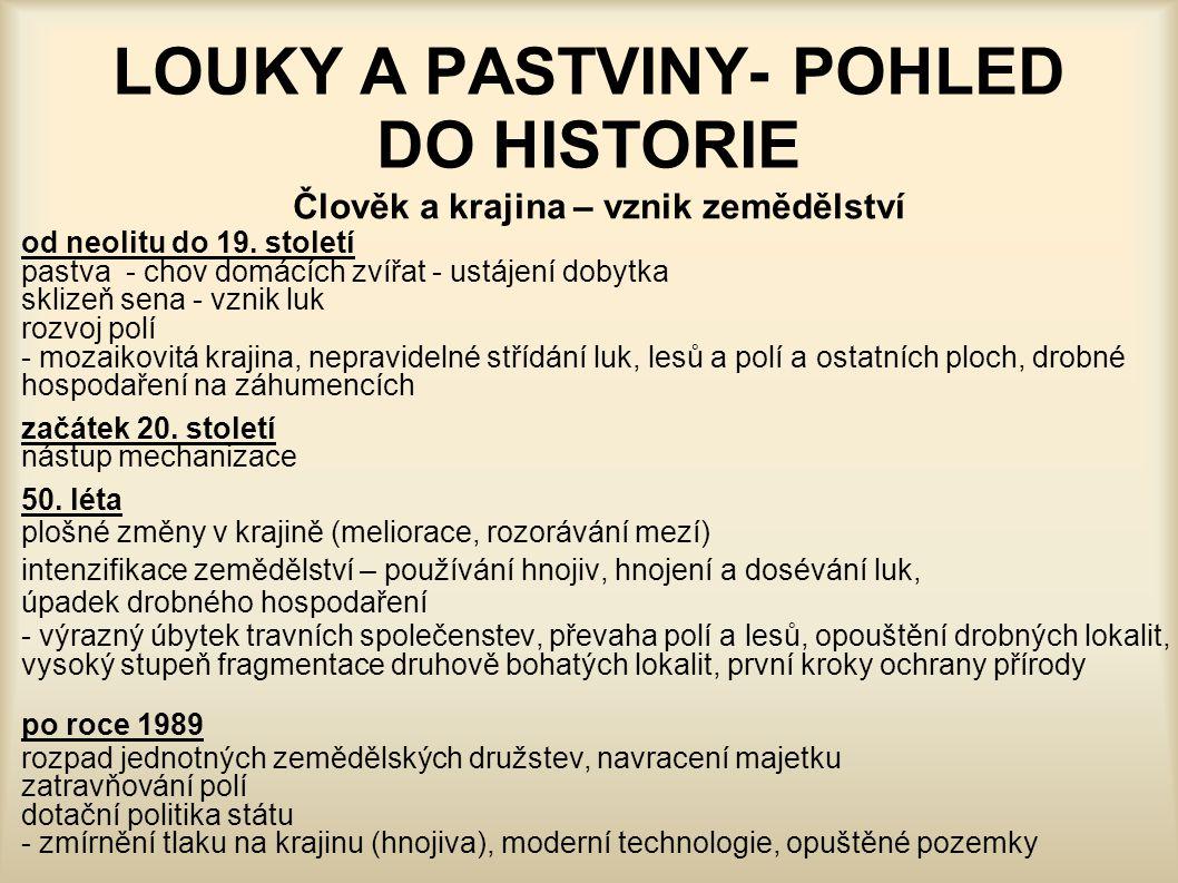 LOUKY A PASTVINY- POHLED DO HISTORIE Člověk a krajina – vznik zemědělství od neolitu do 19. století pastva- chov domácích zvířat - ustájení dobytka sk
