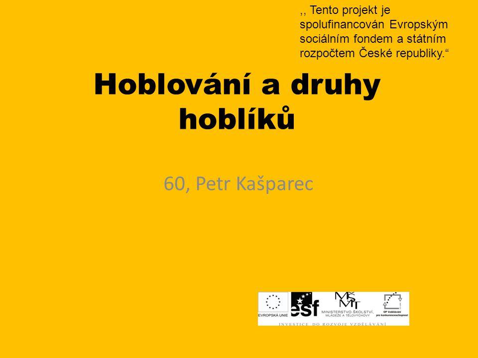 Hoblování a druhy hoblíků 60, Petr Kašparec,, Tento projekt je spolufinancován Evropským sociálním fondem a státním rozpočtem České republiky.