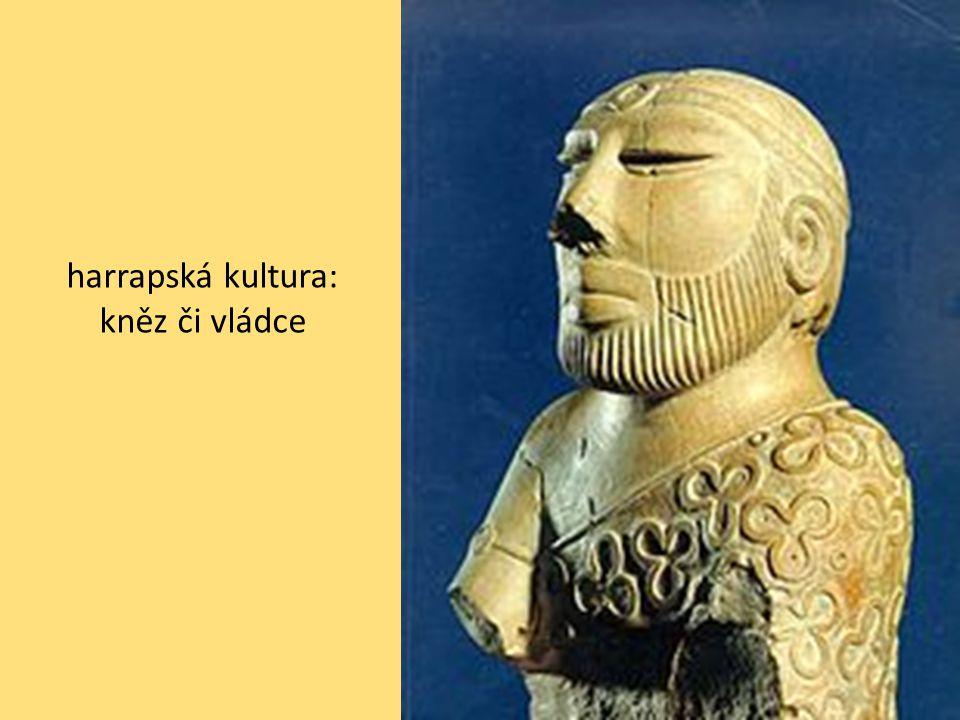 harrapská kultura: kněz či vládce