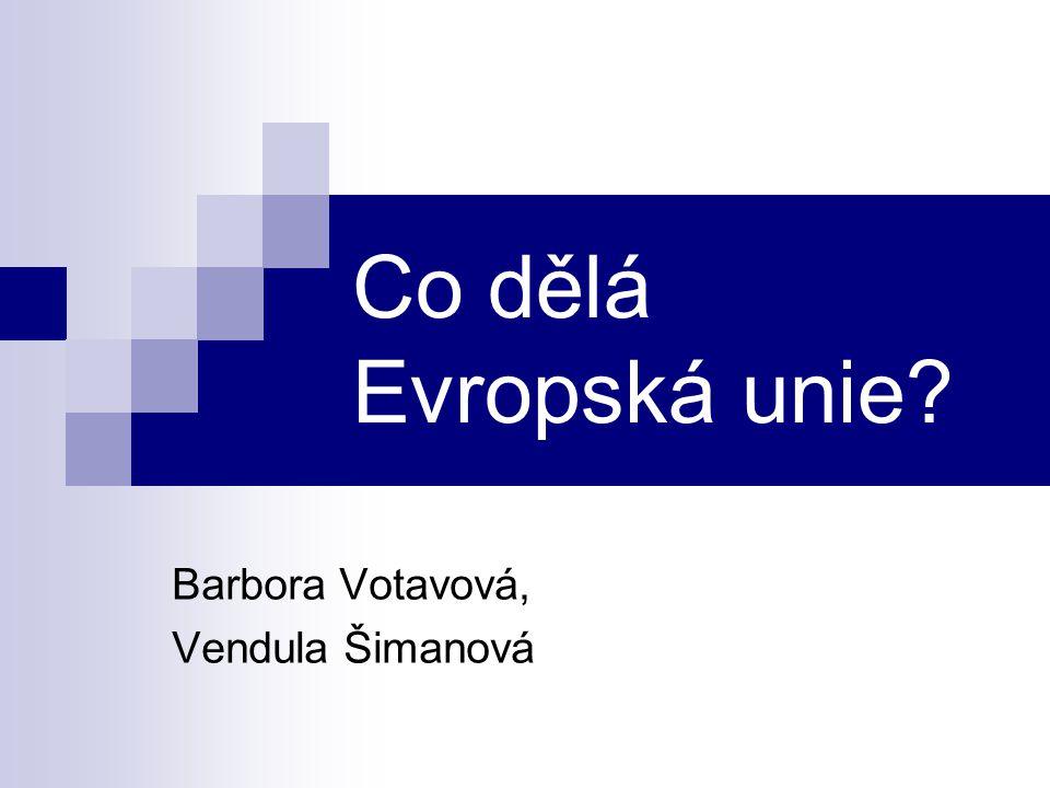 Evropská unie spravuje širokou škálu oblastí politiky — hospodářskou, sociální, regulační a finanční.