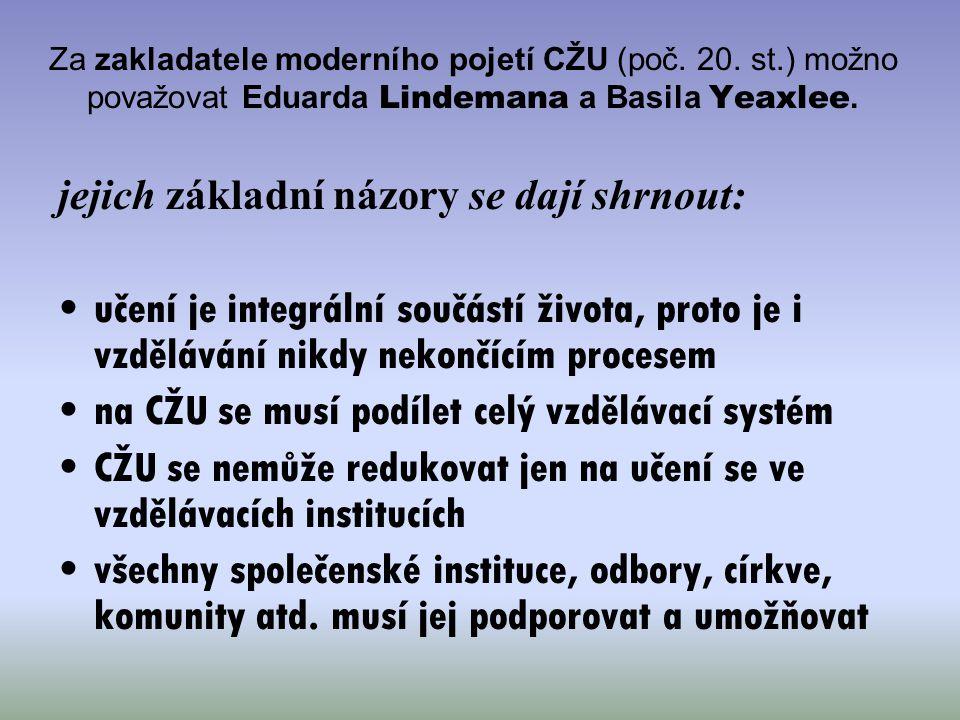 Strategie CŽU ČR neopomíjí ani témata související s již rozběhnutou kurikulární reformou, podporou ICT ve školách, snižováním nerovnosti v přístupu ke vzdělávání a s mimoškolním a zájmovým vzděláváním hlavní důraz je však kladen zejména na podporu dalšího vzdělávání (po vzoru např.