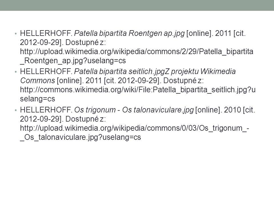 HELLERHOFF. Patella bipartita Roentgen ap.jpg [online]. 2011 [cit. 2012-09-29]. Dostupné z: http://upload.wikimedia.org/wikipedia/commons/2/29/Patella