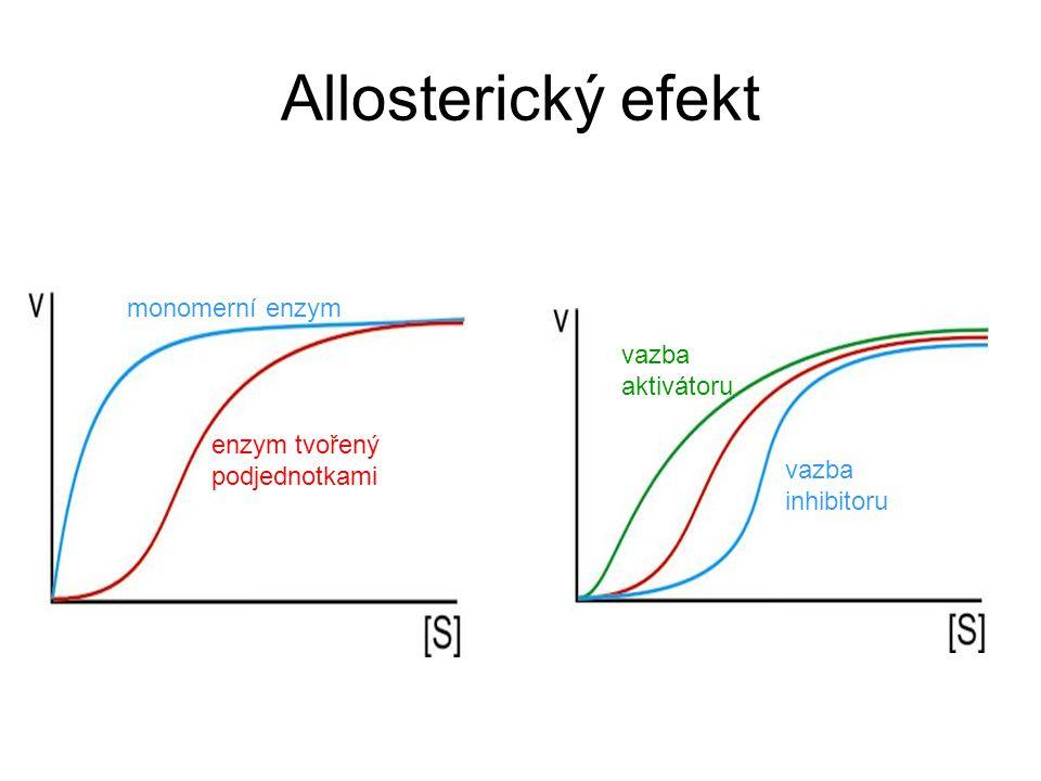 Allosterický efekt monomerní enzym enzym tvořený podjednotkami vazba aktivátoru vazba inhibitoru