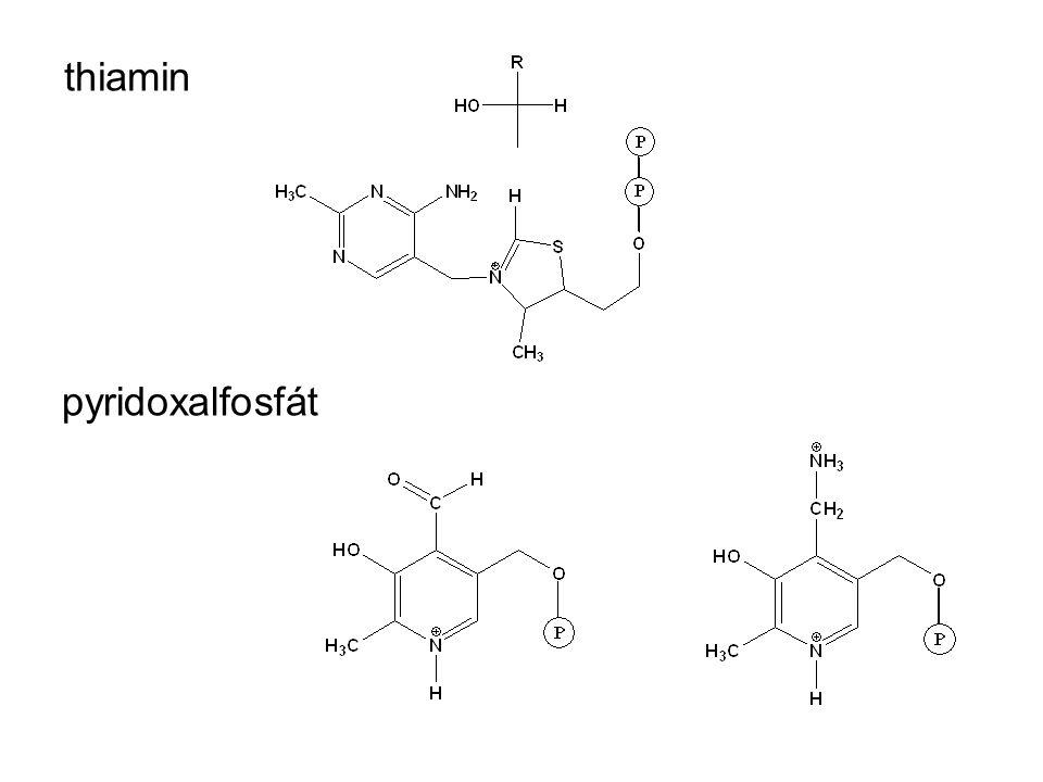 thiamin pyridoxalfosfát