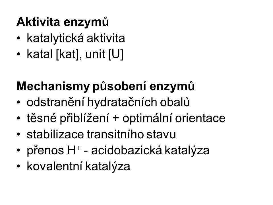 Aktivita enzymů katalytická aktivita katal [kat], unit [U] Mechanismy působení enzymů odstranění hydratačních obalů těsné přiblížení + optimální orien