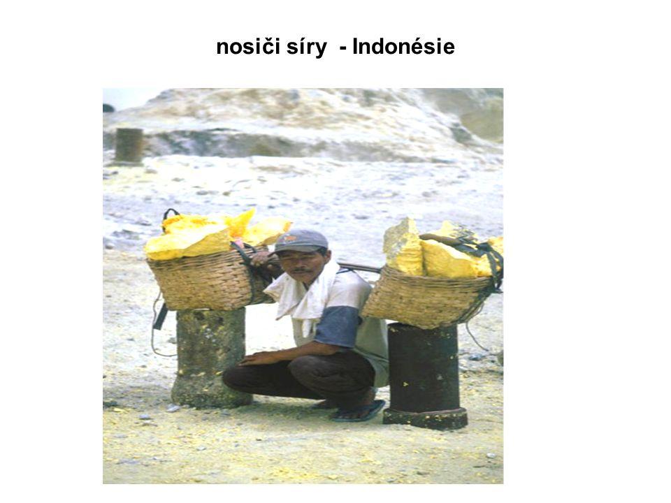 nosiči síry - Indonésie