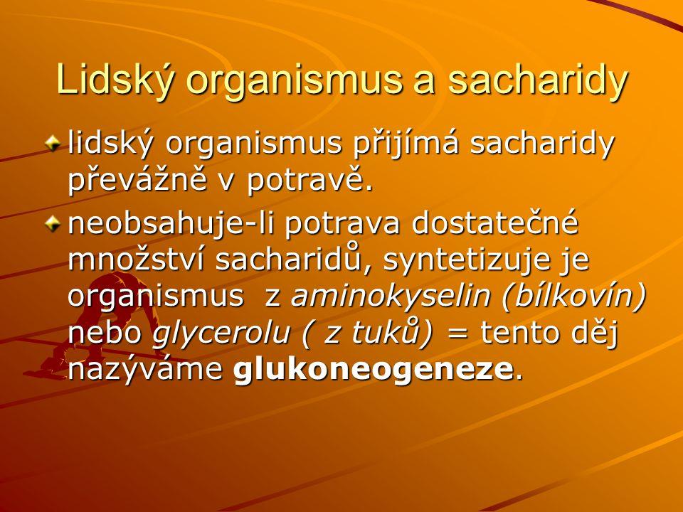 Lidský organismus a sacharidy lidský organismus přijímá sacharidy převážně v potravě.