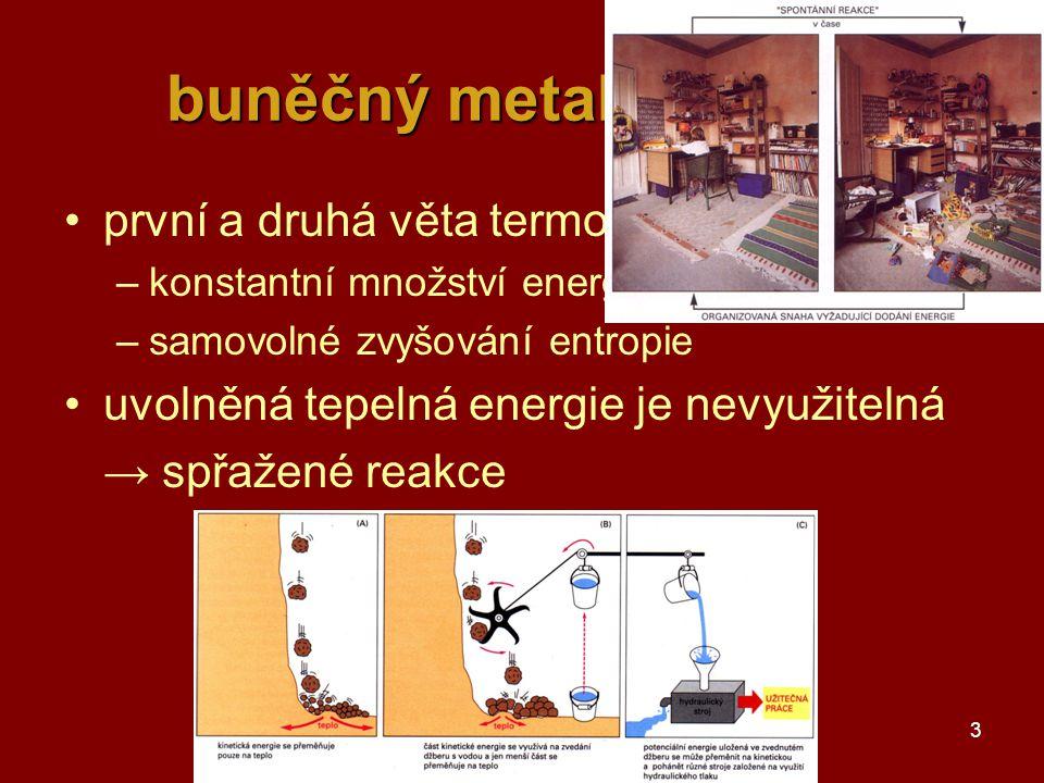 3 buněčný metabolismus první a druhá věta termodynamiky –konstantní množství energie – přeměny –samovolné zvyšování entropie uvolněná tepelná energie