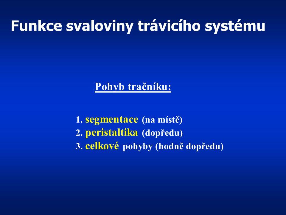 1.kryje povrch většiny orgánů – peritoneum 1.kryje povrch většiny orgánů – peritoneum 2.tvoří závěs střeva = mesenterium 2.tvoří závěs střeva = mesent