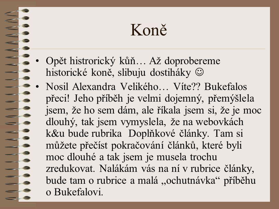 Koně Opět histrorický kůň… Až doprobereme historické koně, slibuju dostiháky Nosil Alexandra Velikého… Víte?.