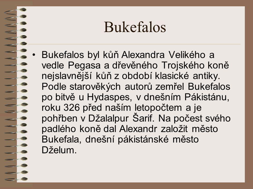 Bukefalos Bukefalos byl kůň Alexandra Velikého a vedle Pegasa a dřevěného Trojského koně nejslavnější kůň z období klasické antiky.
