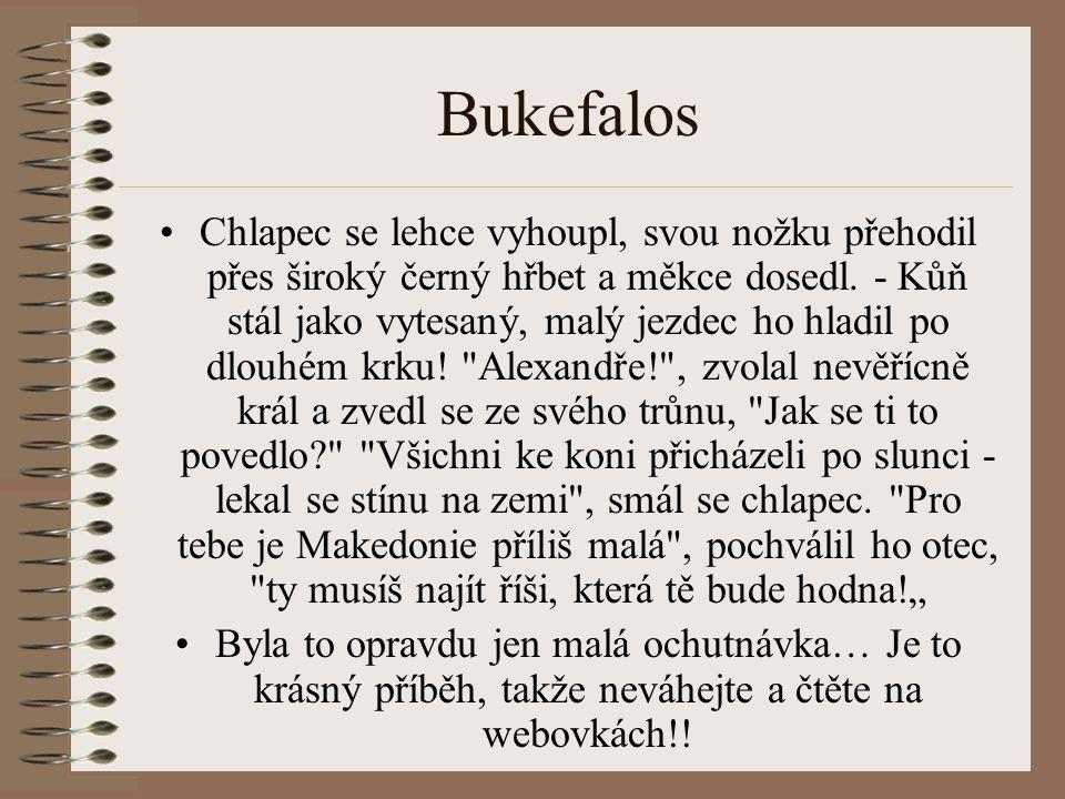 Bukefalos Chlapec se lehce vyhoupl, svou nožku přehodil přes široký černý hřbet a měkce dosedl.