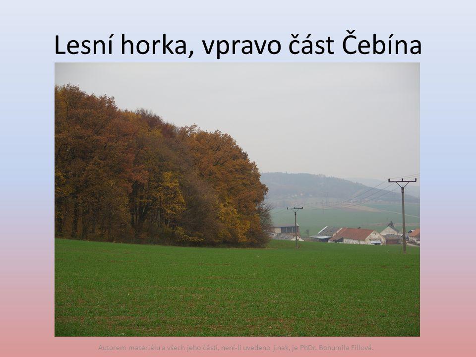 Lesní horka, vpravo část Čebína Autorem materiálu a všech jeho částí, není-li uvedeno jinak, je PhDr.