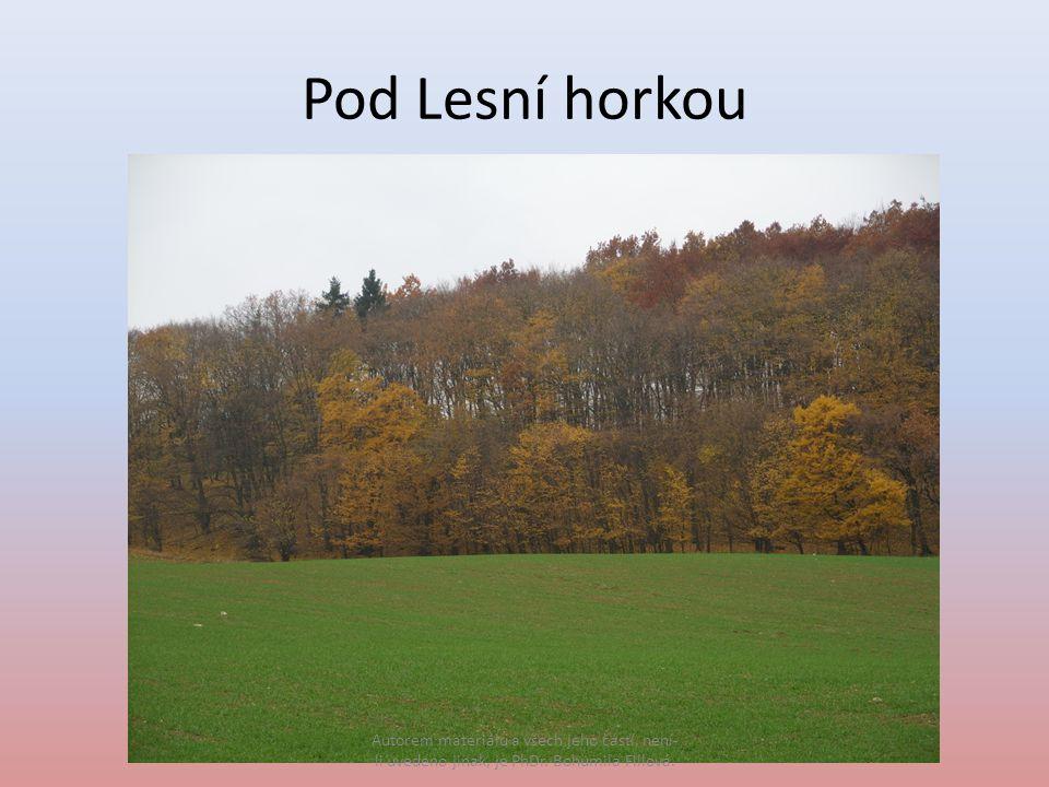 Pod Lesní horkou Autorem materiálu a všech jeho částí, není- li uvedeno jinak, je PhDr.