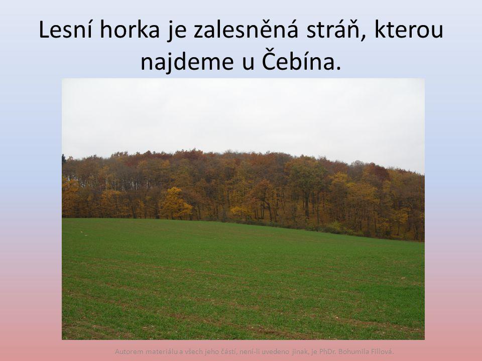 Lesní horka je zalesněná stráň, kterou najdeme u Čebína.