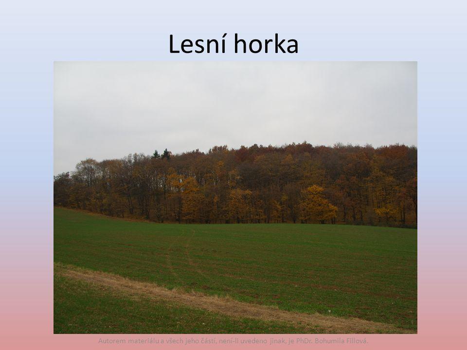 Lesní horka Autorem materiálu a všech jeho částí, není-li uvedeno jinak, je PhDr. Bohumila Fillová.