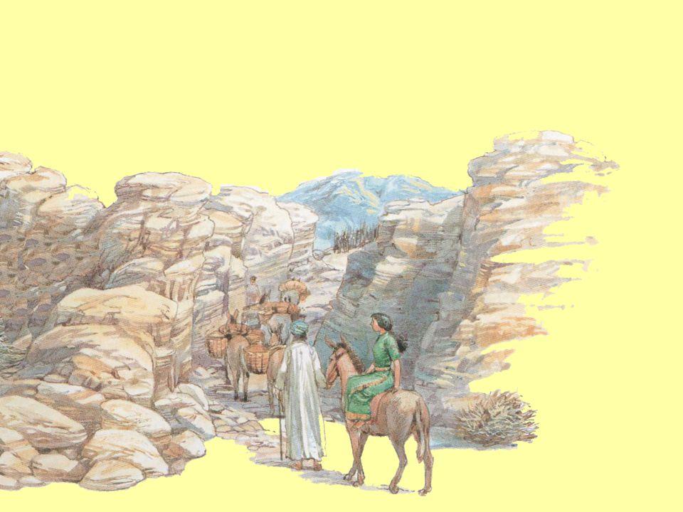Z truhly moudrosti krále Šalamouna 1.