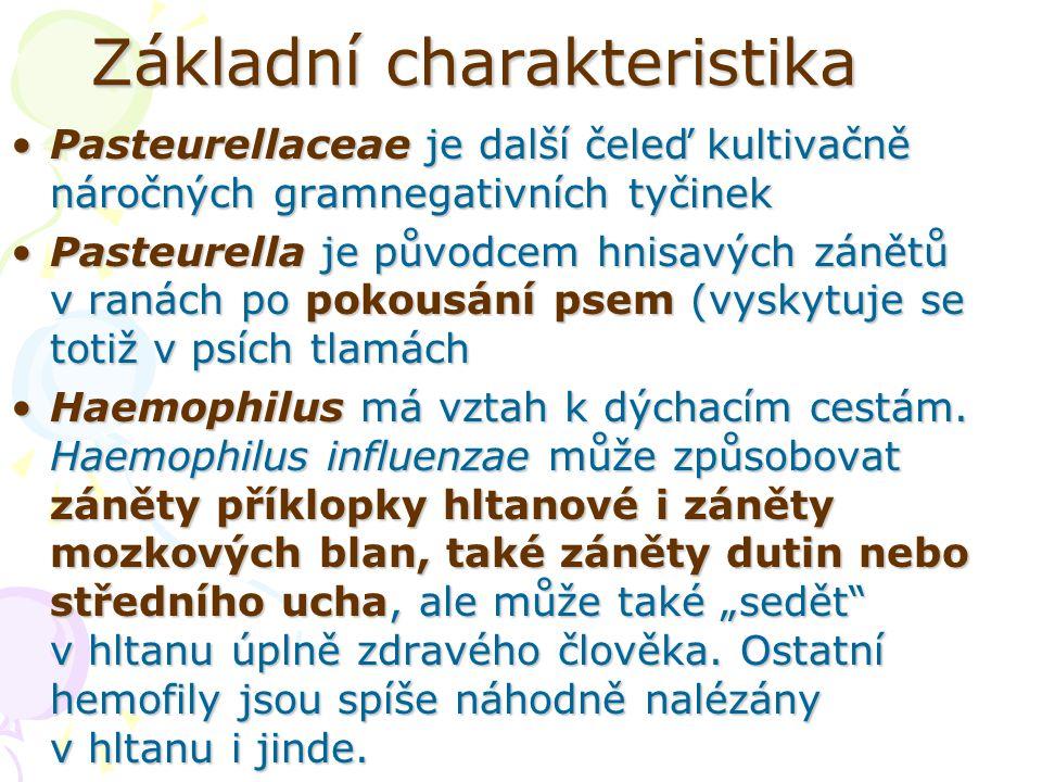 Základní charakteristika Pasteurellaceae je další čeleď kultivačně náročných gramnegativních tyčinekPasteurellaceae je další čeleď kultivačně náročnýc