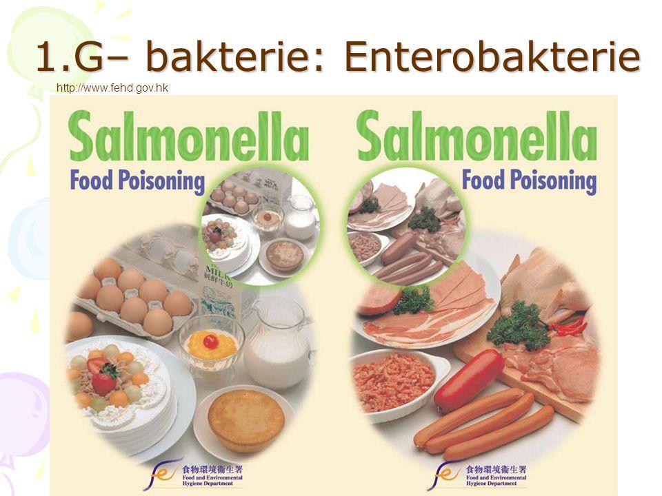 Bakterie: enterobakterie http://www.fehd.gov.hk