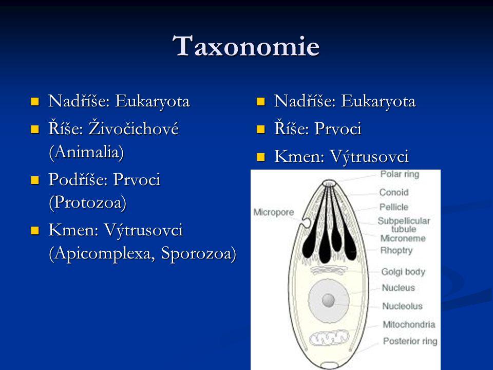 Taxonomie Nadříše: Eukaryota Nadříše: Eukaryota Říše: Živočichové (Animalia) Říše: Živočichové (Animalia) Podříše: Prvoci (Protozoa) Podříše: Prvoci (Protozoa) Kmen: Výtrusovci (Apicomplexa, Sporozoa) Kmen: Výtrusovci (Apicomplexa, Sporozoa) Nadříše: Eukaryota Říše: Prvoci Kmen: Výtrusovci
