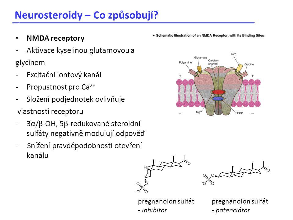 Neurosteroidy – Co způsobují? _____________________________________ NMDA receptory -Aktivace kyselinou glutamovou a glycinem -Excitační iontový kanál