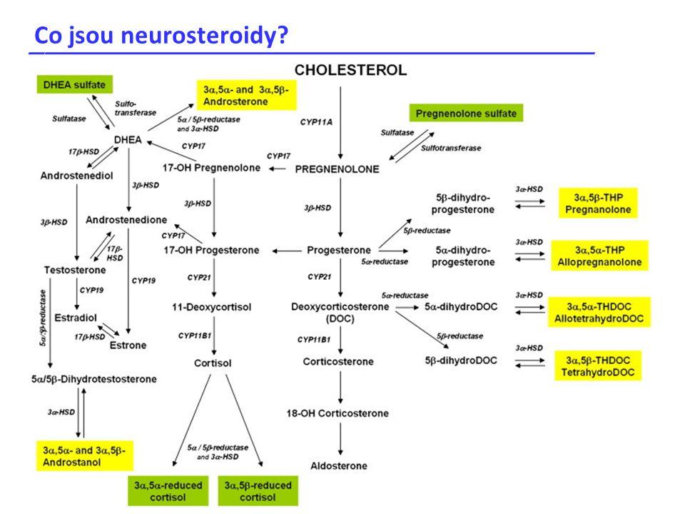 Co jsou neurosteroidy? _____________________________________