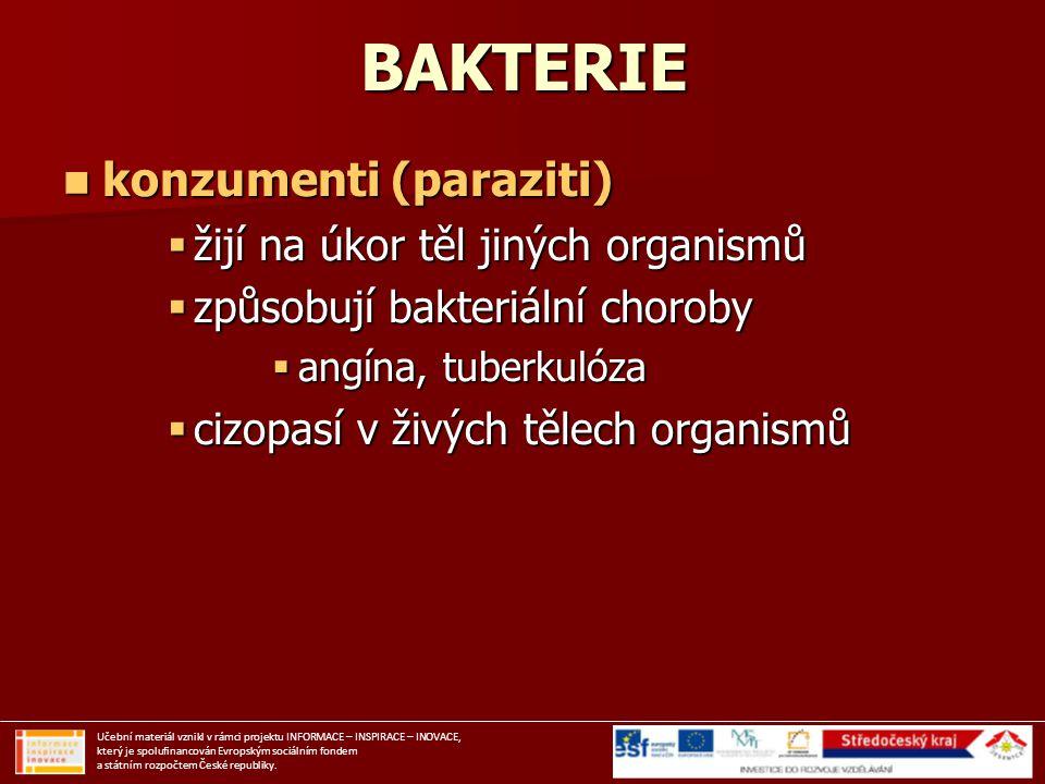BAKTERIE konzumenti (paraziti) konzumenti (paraziti)  žijí na úkor těl jiných organismů  způsobují bakteriální choroby  angína, tuberkulóza  cizop