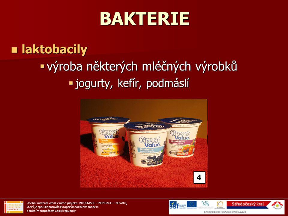 BAKTERIE laktobacily laktobacily  výroba některých mléčných výrobků  jogurty, kefír, podmáslí Učební materiál vznikl v rámci projektu INFORMACE – IN